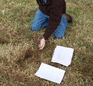 Comprehensive soil testing for balanced soil nutrition.