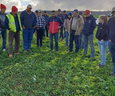Group discussion about how Guano can improve pastures