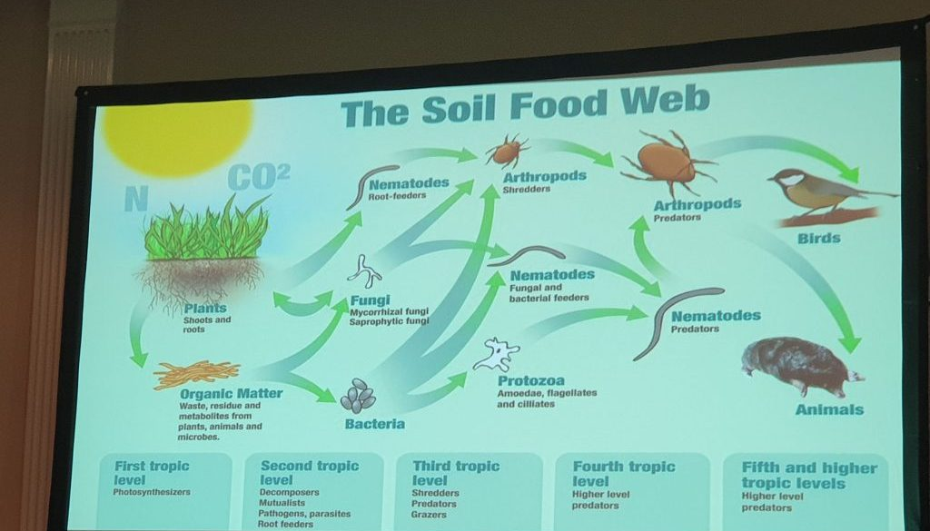 Soil health and the Soil Food Web